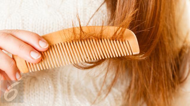 Rambut kering dan Rusak