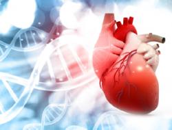 9 Gejala Umum dari Pembengkakan Jantung
